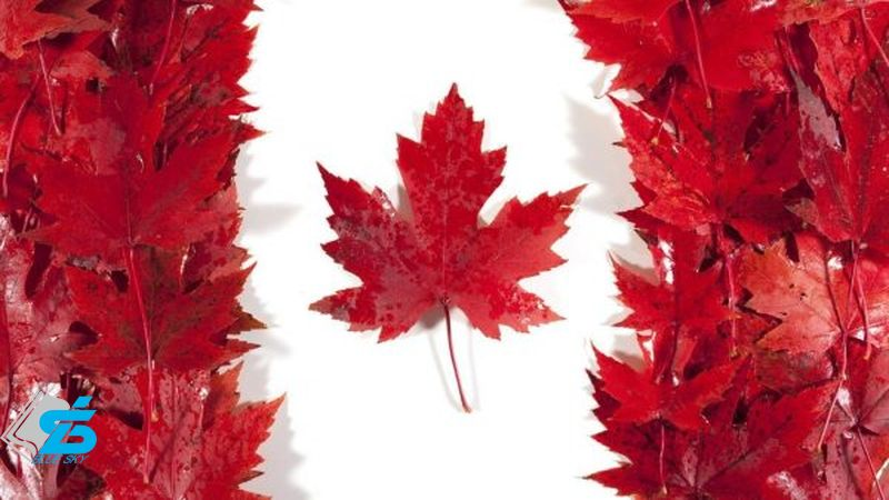 Official Canadian flag